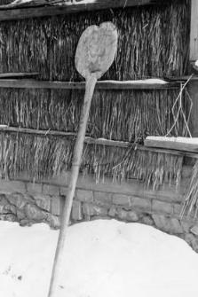 Bread shovel