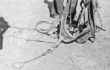 Horse collar fragment