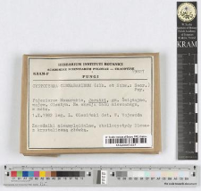 Cystoderma cinnabarinum (Alb. et Schw.: Secr.) Fay.