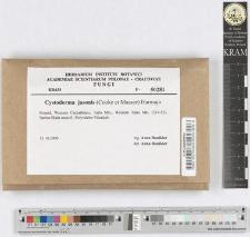 Cystoderma jasonis (Cooke et Massee) Harmaja