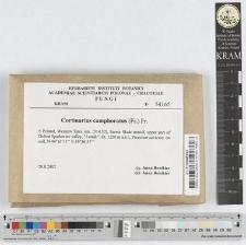 Cortinarius camphoratus (Fr.) Fr.