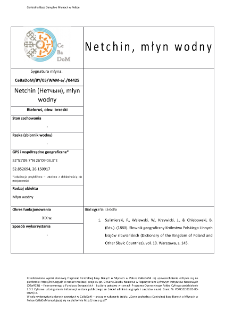 Netchin (Нетчын), młyn wodny