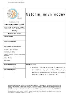 Netchin (Нетчын), watermill