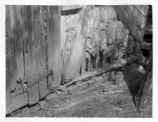 A fragment of a half-timbered barns wall
