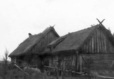 A barn, a shed, pigsties