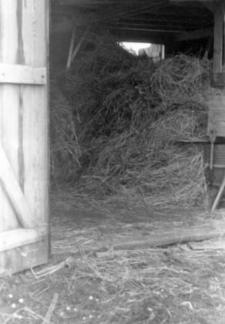 An interior of a barn, so-called