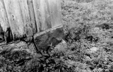 A fragment of a barns wall and a stone foundation
