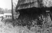 A building fragment, thatched roof