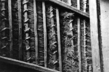 The method of attaching straw sheaves on a roof of a barn