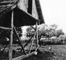 A structure of a half-timbered barn