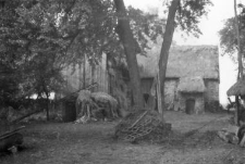 Stodoła z przybudowanym brogiem, piwnica