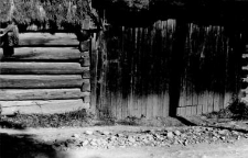 A fragment of a barns wall