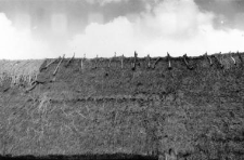 A roof, reinforcement of an upper ridge