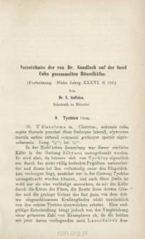 Verzeichniss der von Dr. Gundlach auf der Insel Cuba gesammelten Rüsselkäfer : (Fortsetzung. Siehe Jahrg. XXXVI s. 150)