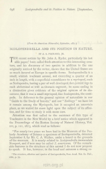Scolopendrella and its Position in Nature