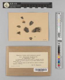 Stereocaulon tyroliense Nyl. var. lapponicum H. Magn.