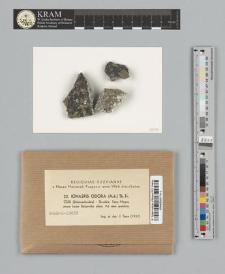 Ionaspis odora (Ach.) Th. Fr.