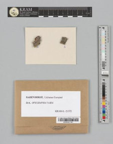 Opegrapha varia Pers.