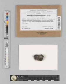 Staurothele clopima (Wahlenb.) Th. Fr.