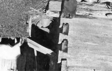 Konstrukcja zrębowa