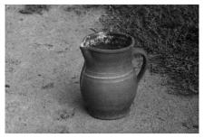A clay jug