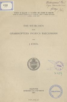 Das Weibchen von Grammoptera ingrica Baeckmann = Samica chrząszcza Grammoptera ingrica Baeckmann