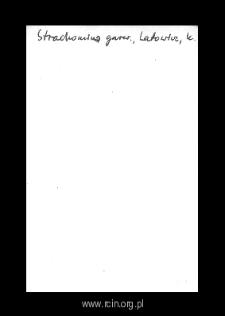 Strachomin. Kartoteka powiatu czerskiego w średniowieczu. Kartoteka Słownika historyczno-geograficznego Mazowsza w średniowieczu
