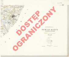 Powiat Konin : województwo poznańskie : skala 1:25 000