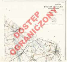 Powiat Mogilno : województwo bydgoskie : skala 1:25 000