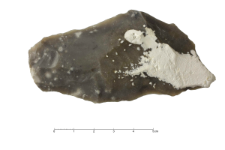 Speckled Senonian Flint : 2D documentation