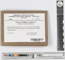 Gloeocystidiellum clavuligerum (Hӧhn. & Litsch) Nakasone