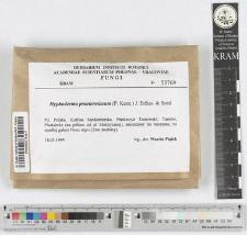 Hyphoderma praetermissum (P. Karst.) J. Erikss. & Strid