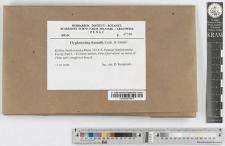Hyphodontia crustosa (Pers.: Fr.) J. Erikss.
