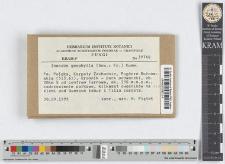 Inocybe geophylla (Sow.: Fr.) Kumm.