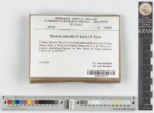 Mycena cinerella (P. Karst.) P. Karst.