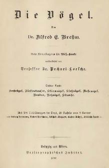 Brehms Tierleben : Die Vögel. Bd. 3(6): Suchvögel, Flossentaucher, Sturmvögel, Stoßvögel, Wehrvögel, Nandus, Roßvögel, Strauße