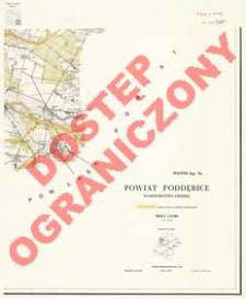 Powiat Poddębice : województwo łódzkie : skala 1:25 000
