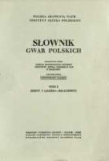 Słownik gwar polskich. T. 1 z. 2, Algiera-Bałachosty