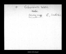 Szczęsne. Kartoteka powiatu błońskiego w średniowieczu. Kartoteka Słownika historyczno-geograficznego Mazowsza w średniowieczu