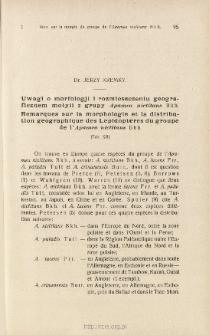 Uwagi o morfologji i rozmieszczeniu geograficznem motyli z grupy Apamea nictitans Bkh.