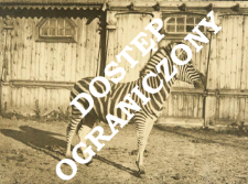 Zoo Warszawa