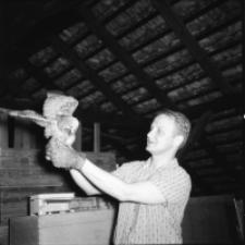 [A. Ruprecht z młodym puszczykiem (2)]