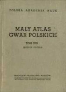 Mały atlas gwar polskich. T.13.