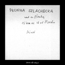 Płonna Szlachecka, now part of Płonna. Files of Plonsk district in the Middle Ages. Files of Historico-Geographical Dictionary of Masovia in the Middle Ages