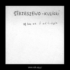 Strzeszewo-Kuliski. Files of Plonsk district in the Middle Ages. Files of Historico-Geographical Dictionary of Masovia in the Middle Ages