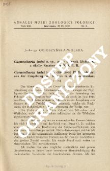 Caenestheria tadei n. sp., eine neue Phyllopodenart aus der Umgebung von Saratov in der Sowjetunion