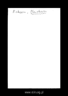 Pluskocin. Kartoteka powiatu wyszogrodzkiego w średniowieczu. Kartoteka Słownika historyczno-geograficznego Mazowsza w średniowieczu