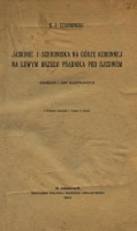 Jaskinie i schroniska na Górze Koronnej na lewym brzegu Prądnika pod Ojcowem : sprawozdanie z badań paleoetnologicznych /