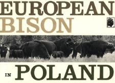 European Bison in Poland