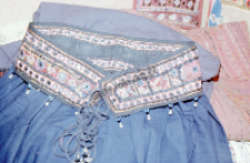 Fragment of female garment, Rajasthan (Iconographic document)